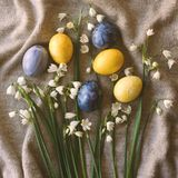 Flowers and easter eggs stock images