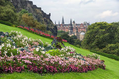 Flowers of Edinburgh castle Royalty Free Stock Image