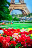 Flowers and Eiffel tower Royalty Free Stock Image