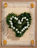 Flowers Elegance Stock Photo