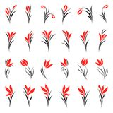 Flowers. Elements for design. Royalty Free Stock Images