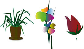 Flowers. The elements of street and indoor plants in the form of illustrations Stock Image