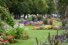 Flowers on the embankment Bedford, UK. Royalty Free Stock Images