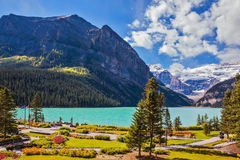 Flowers on the embankment of Lake Louise. Royalty Free Stock Images