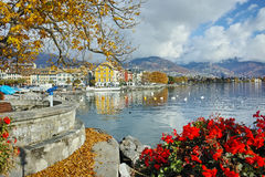 Flowers in embankment of town of Vevey and Lake Geneva, Switzerland Royalty Free Stock Image