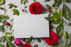 Flowers with empty gray notebook. Beautiful spring floral frame on a gray background is made of red flowers with a special place for your text Royalty Free Stock Photo