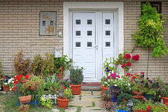 Flowers Entrance. Flowers and plants in front of house entrance Stock Image