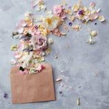 Flowers in envelope Stock Photos