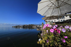 Flowers on the  Erhai lake of yunnan Royalty Free Stock Image