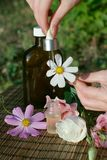 Flowers and essential oil stock photos