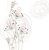 Flowers fantasy. Cute background  for your text Stock Photos