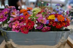 Flowers at Farmer's Market. Beautiful floral arrangement at the farmer's market in Charlottesville, Virginia Stock Photography