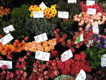 Flowers at farmers market Stock Photography