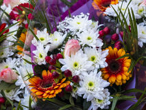 Flowers on Farmers Market in Lancaster England in the Centre of the City Royalty Free Stock Photography