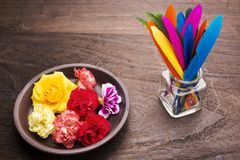 Flowers and feathers. Standing colorful remiges feathers and colorful flowers Stock Image