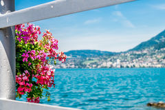 Flowers on fence in Montreux. Stock Photography