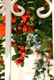 Flowers in the fence. Orange flowers in a white fence royalty free stock photography
