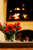 Flowers by the fire Royalty Free Stock Photos