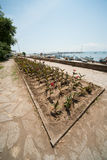Flowers on the fishing quay in Pomorie, Bulgaria Royalty Free Stock Photography
