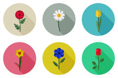 Flowers flat icons. With long shadow. Vector simple illustration of garden flowers Royalty Free Stock Images