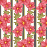 Flowers floral seamless pattern texture on striped Royalty Free Stock Images