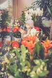 Flowers in florist shop Royalty Free Stock Images