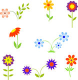Flowers, Flower Illustrations Royalty Free Stock Photo