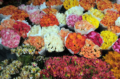Flowers in the flower market. Bunches of flowers in the flower market Stock Photos