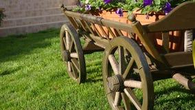 Flowers in flowerbed sway in wind beside cart.  stock video