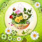 Flowers in flowerpot Stock Image