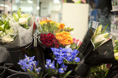 Flowers in flowers shop Royalty Free Stock Photo