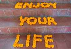 Flowers forming motivating words. Flowers on stairs forming the words Enjoy your Life. Motivational Quote Royalty Free Stock Photos