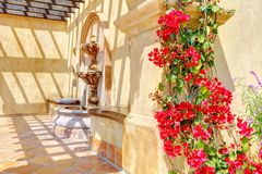 Flowers and fountain on Spanish wall details. Stock Images