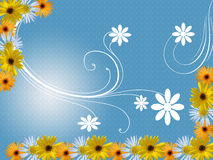 Flowers frame. With white ornaments Stock Image