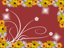 Flowers frame. With white ornaments Royalty Free Stock Photo