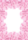 Flowers frame. Frame made of pink roses flowers, isolated Royalty Free Stock Images