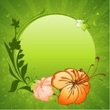 Flowers frame Royalty Free Stock Images