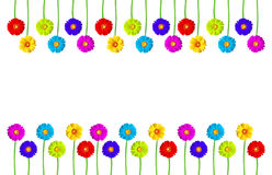 Flowers frame of colorful gerber stock image