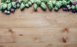 Flowers frame of hop twig on wooden background Royalty Free Stock Photo