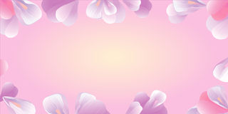 Flowers frame. Pink petals  on pink. Vector Royalty Free Stock Image