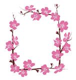 Flowers frame  on white Royalty Free Stock Image