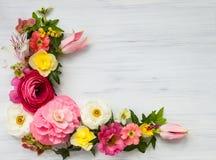 Flowers frame Royalty Free Stock Photos
