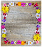 Flowers frame on wood Royalty Free Stock Image