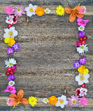 Flowers frame on wood Royalty Free Stock Photo