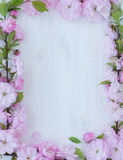 Flowers frame on wooden background Royalty Free Stock Images