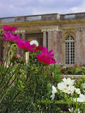 Flowers in front of the Grand Trianon Royalty Free Stock Photos