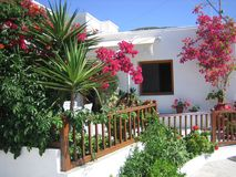 Flowers In Front of Greek House. Flowers and plants in front of a Greek house, Sifns island, Cycldes, Greece royalty free stock photos