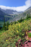 Flowers in front of the Grinnell Glacier and lake in Glacier National Park Royalty Free Stock Photography