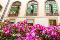 Flowers in front of house facade, Italy Royalty Free Stock Images