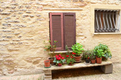 Flowers in front on Italian window Royalty Free Stock Photo